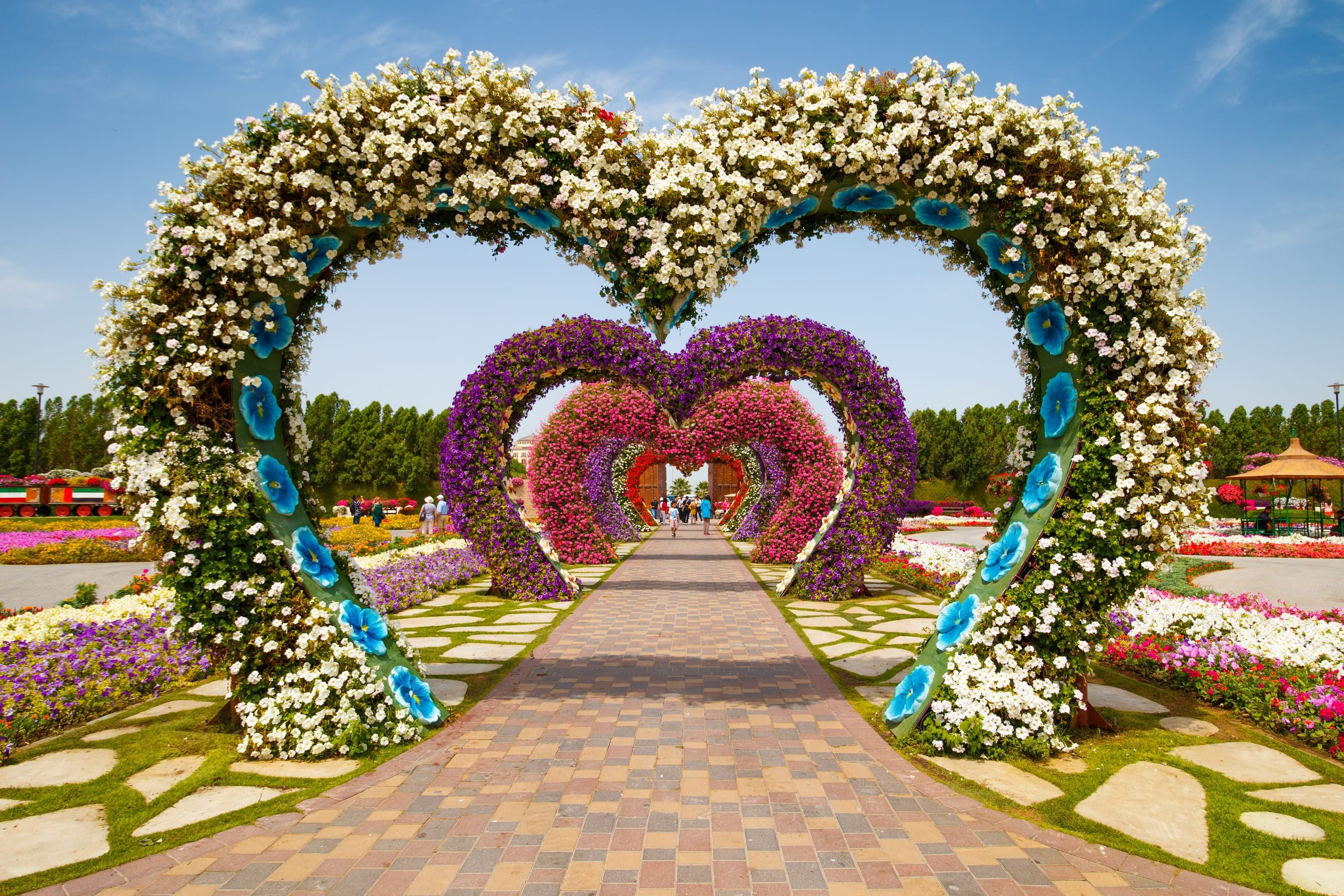 Hearts way in Dubai Miracle Garden in the UAE on March 28, 2015. It has over 45 million flowers.