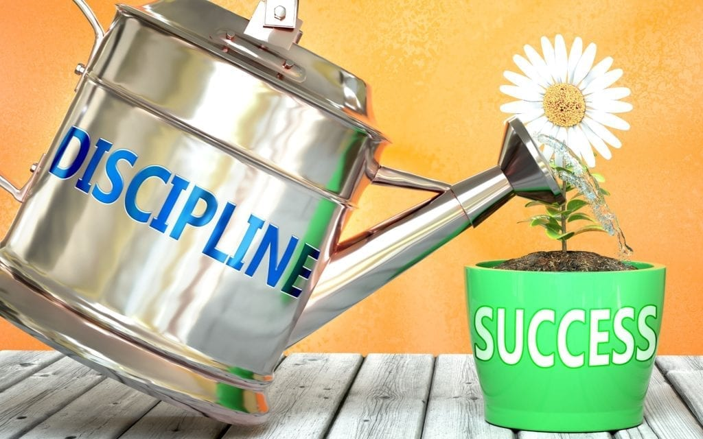 Discipline helps achieving success - pictured as word Discipline on a watering can to symbolize that Discipline makes success grow and it is essential for profit in life and business.