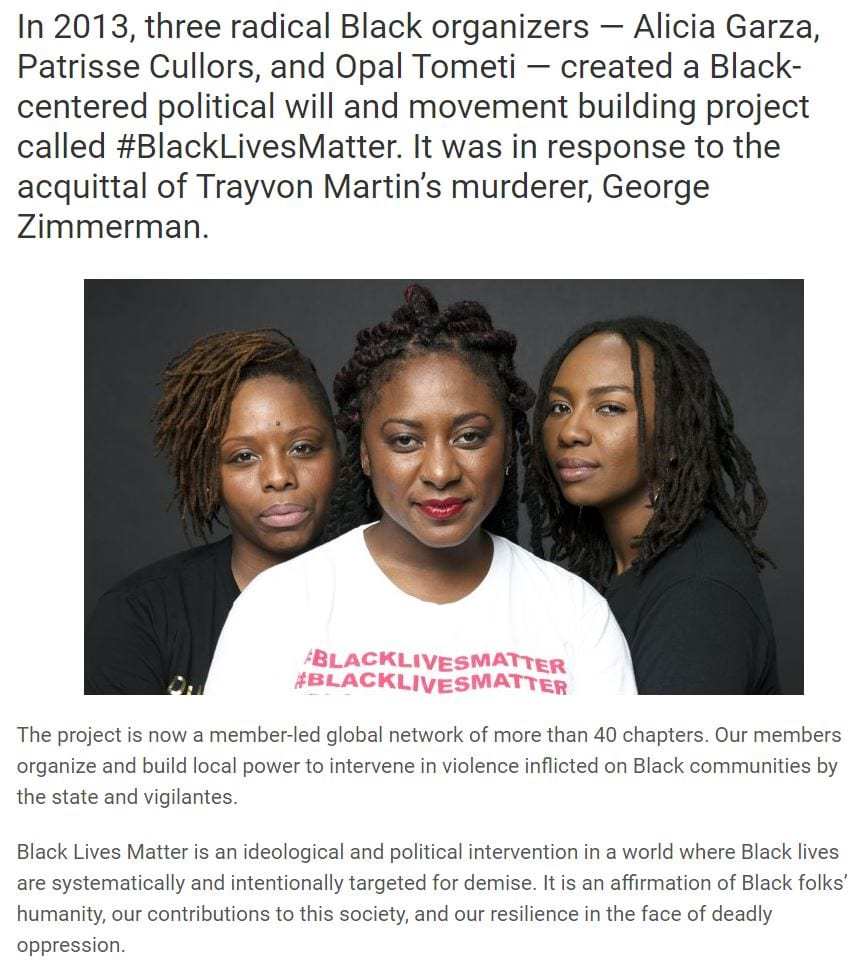 A screen shot showing a snippet of the origin story of Black Lives Matter (as shown on the organization's website).