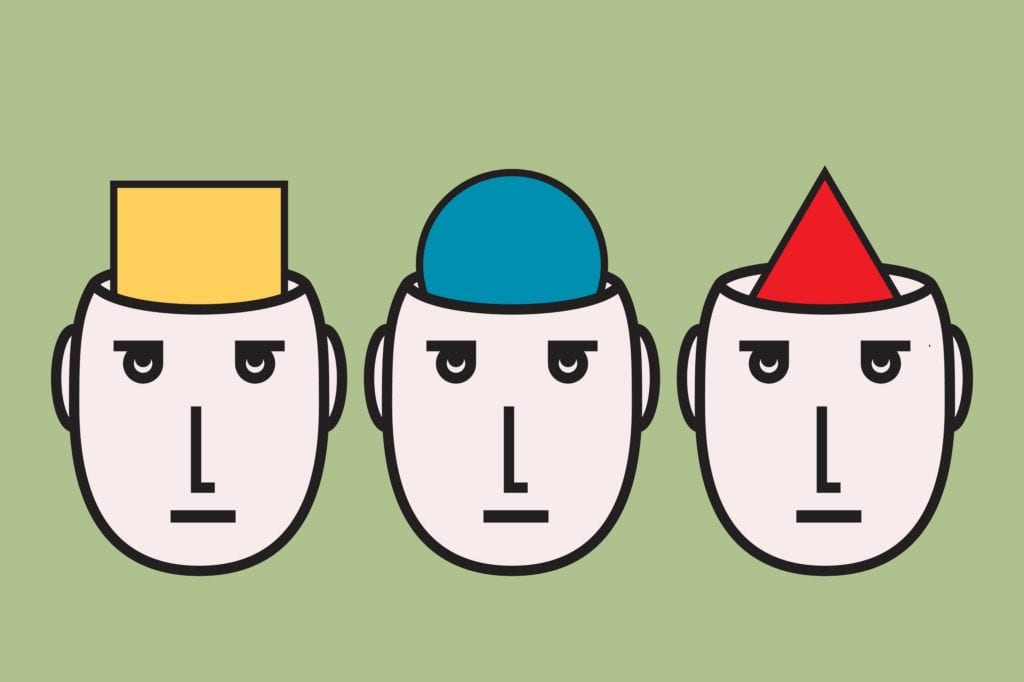 opinion diversity: people having different convictions.