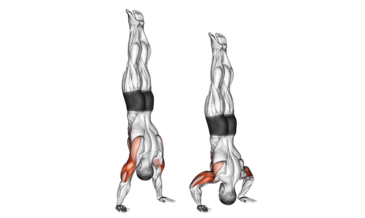 An illustration showing a handstand push-up.